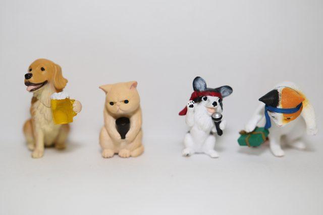 アフター5の動物たち3軒目-1